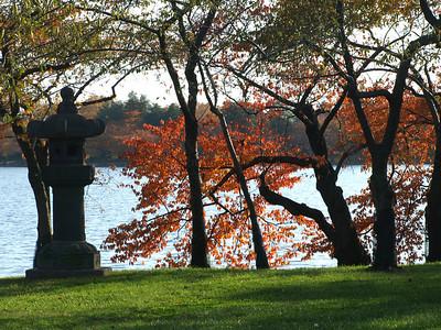 Japanese lantern at the Tidal Basin, Wasington, DC. Lincoln Memorial