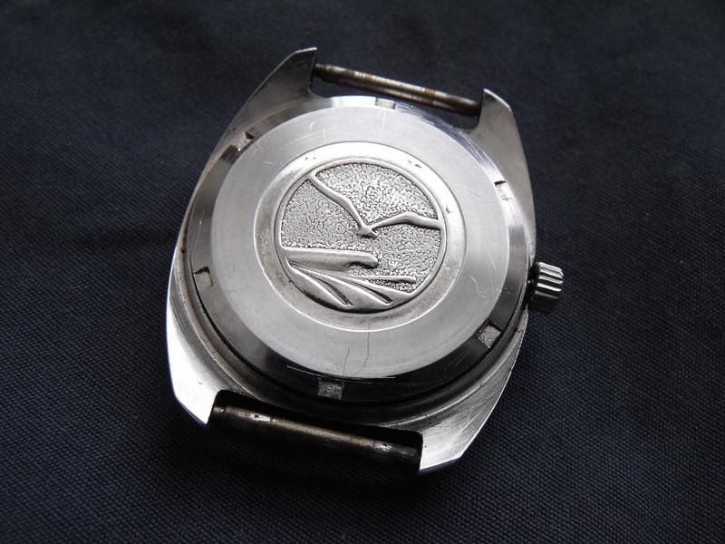 Sea-Gull 5 back