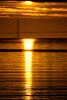 Sun Ray<br /> <br /> 20101204-IMG_4527