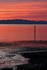 Rodeo Sunset 3