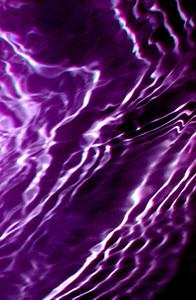 Pics 8 079 Purple