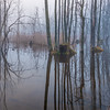 """""""Rising Water 2"""" (photography) by Alexandra Latypova"""