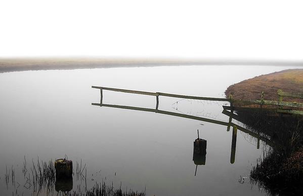 """""""Early Morning Fog, Arcata Bottoms, Arcata, CA"""" (photography) by David Colón"""