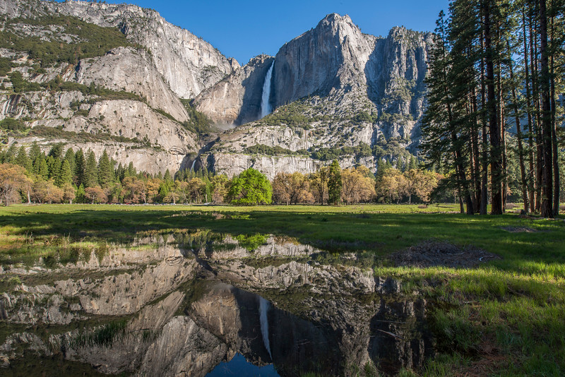"""Reflections of Yosemite Falls"" (photography) by Sonia Suter"