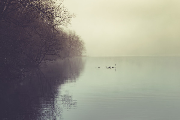 """""""Late Winter, Early Morn"""" (photography) by Leslie Coston"""