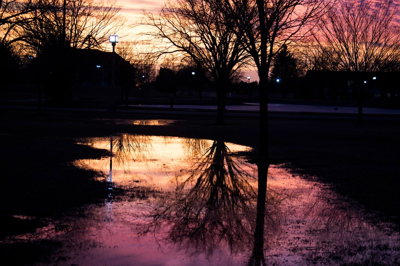 """Flooding Reflections"" (photography) by Brandon Emert"