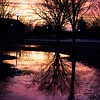 """Flooding Reflections"" (photography) by Brandon Emert"