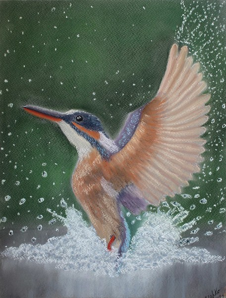 """Kingfisher"" (pastel) by Maria Kolesnikova"