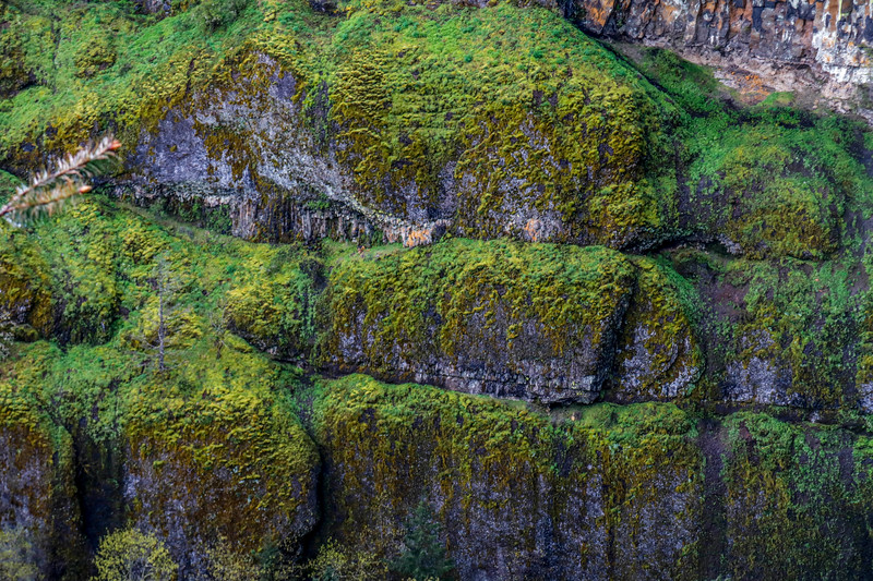 Mossy Cliffs.  that Green!!!!
