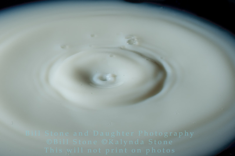 Water Drops-Bill Stone-_PAT3701
