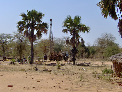 The drilling rig is almost as tall as these date palms.