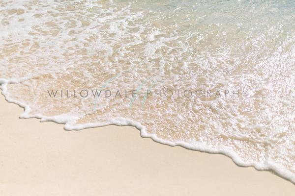 Dreamy Shores
