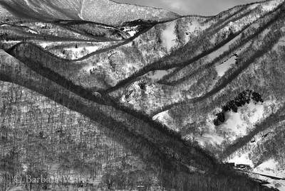 Snowy Hills Of Hokkaido