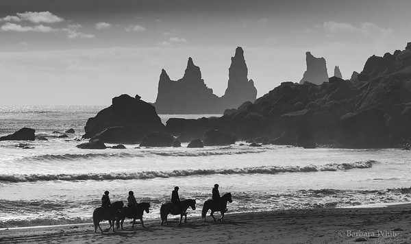 Horses on Reynisfjara Beach