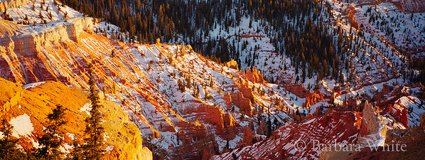 Cedar Breaks National Monument I