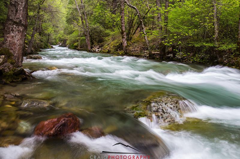 Downie River, California #5