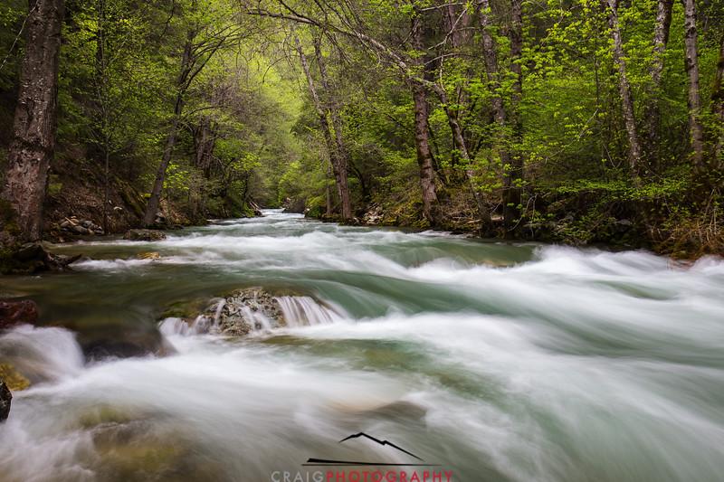 Downie River, California #6
