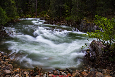 North Yuba River, Downieville CA #1