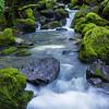 Secret Sonoma Water 6