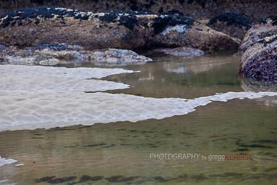 Low tide...Oregon Coast