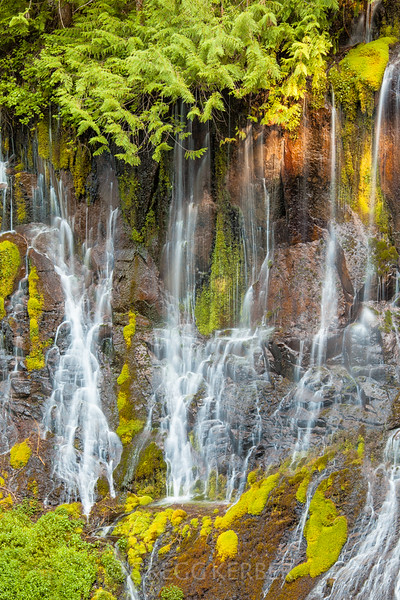 IMAGE: http://gkphotography.smugmug.com/Landscapes/WaterfallsWater-Features/i-GX9gtRZ/1/L/MG3544-L.jpg