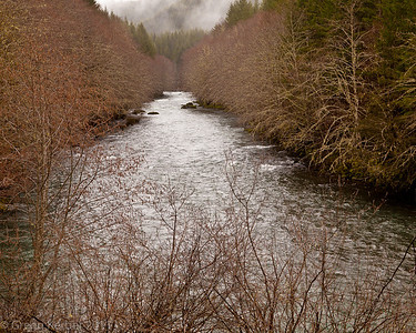 Molalla River (3/11)