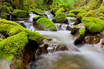 Summit Creek, Columbia River Gorge