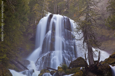 Middle tier - Falls Creek Falls - Gifford Pinchot NF