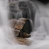 Mill Shoal Falls