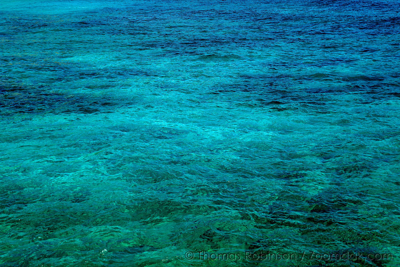 Reef and sand mix underwater to create this beautiful blue water at Kawailoa Bay in Kauai.