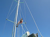 Ascending the main halyard for some photos.