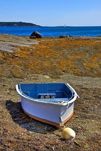 Waiting for you in Harpswell, Maine #850