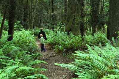 Laura looks back as she follows her mom through a world of ferns.