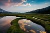 Infinity Ponds