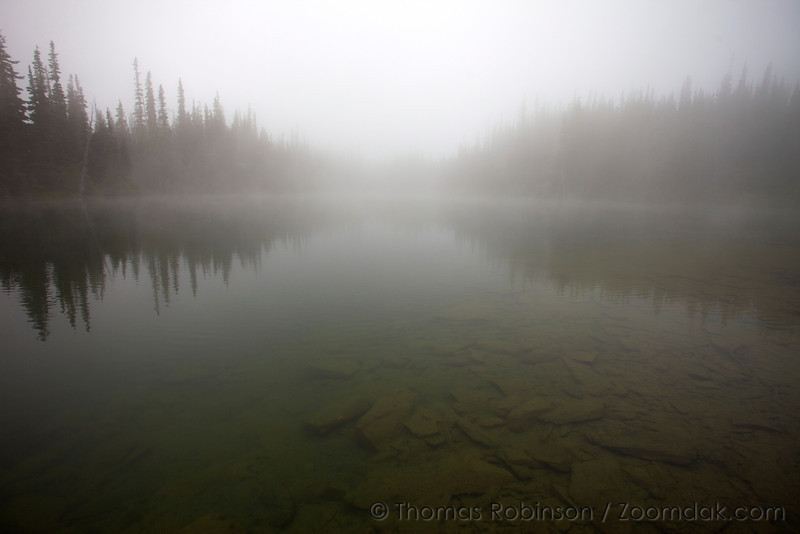 Fog settles upon Royal Lake creating an ethereal effect with the trees and water disappearing into the distance.