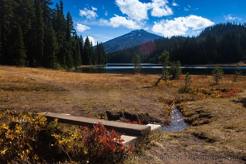 Trail Around Todd Lake