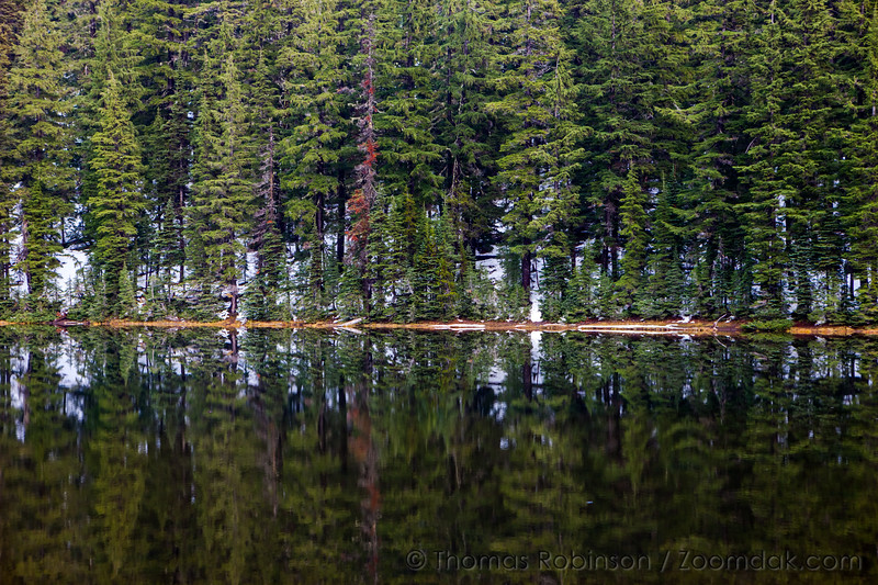 Todd Lake Reflection