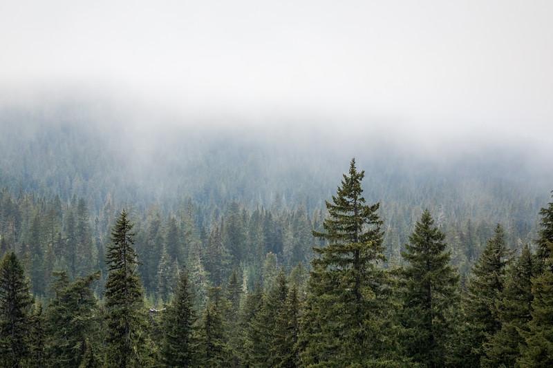 Mist Over Odell