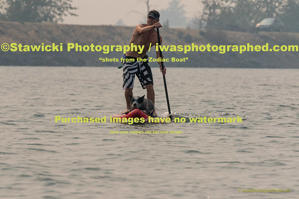 Event Site Photos, SUP, Paddling, Sailboats Sat Aug 22, 2015-4583