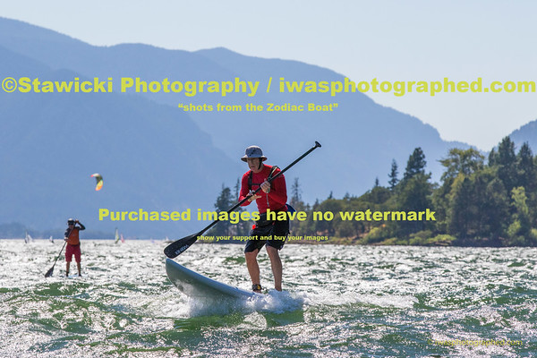 Paddling At the Hatchery Tue Aug 4, 2015-6990
