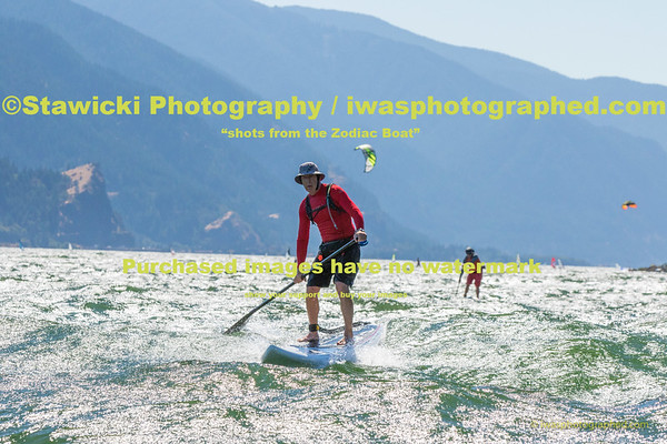 Paddling At the Hatchery Tue Aug 4, 2015-6991