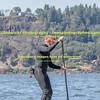 Wells Island SUP'er Mon May 25, 2015-8945