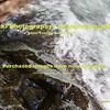 Sprit Falls Kayakers 3 28 15-5945