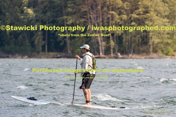 Wells Island Paddle Boarders Wed Aug 12, 2015-4292