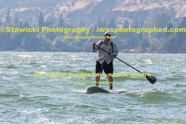 Wells Island Paddle Boarders Wed Aug 12, 2015-4287
