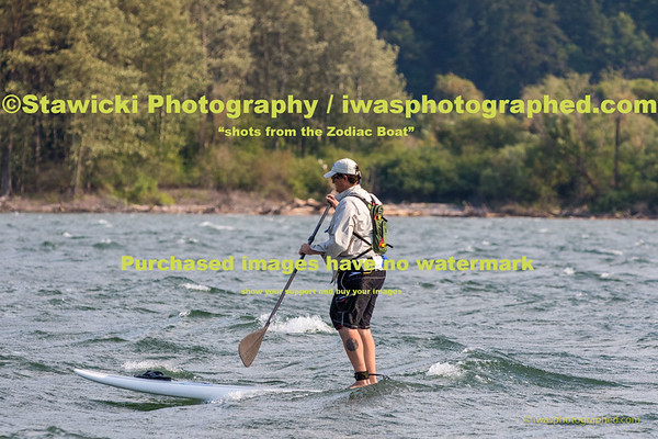 Wells Island Paddle Boarders Wed Aug 12, 2015-4291