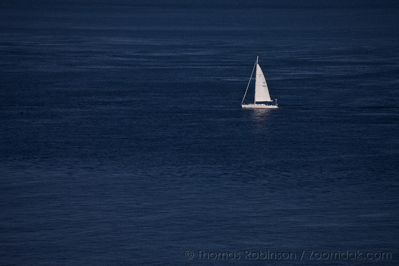 A sailboat floats on the blue of the Puget Sound. Sailboat USA 56139