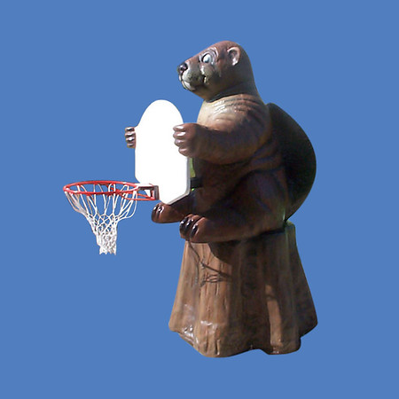 Beaver Basketball Hoop #9122