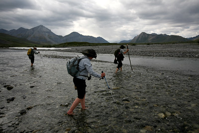 KONGAKUT RIVER, AK - Hike I: Headwater. Bobby, Jesse & Sune (l. to r.) use walking sticks to balance as they brave the icy snowmelt waters of the upper Kongakut on our first hike. We're heading up river to look for the heard of 1500+ caribou spotted on the flight in.