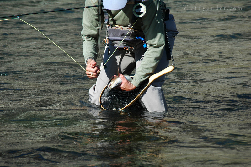 Danny manages to hook a good looking fish with his fly rod.